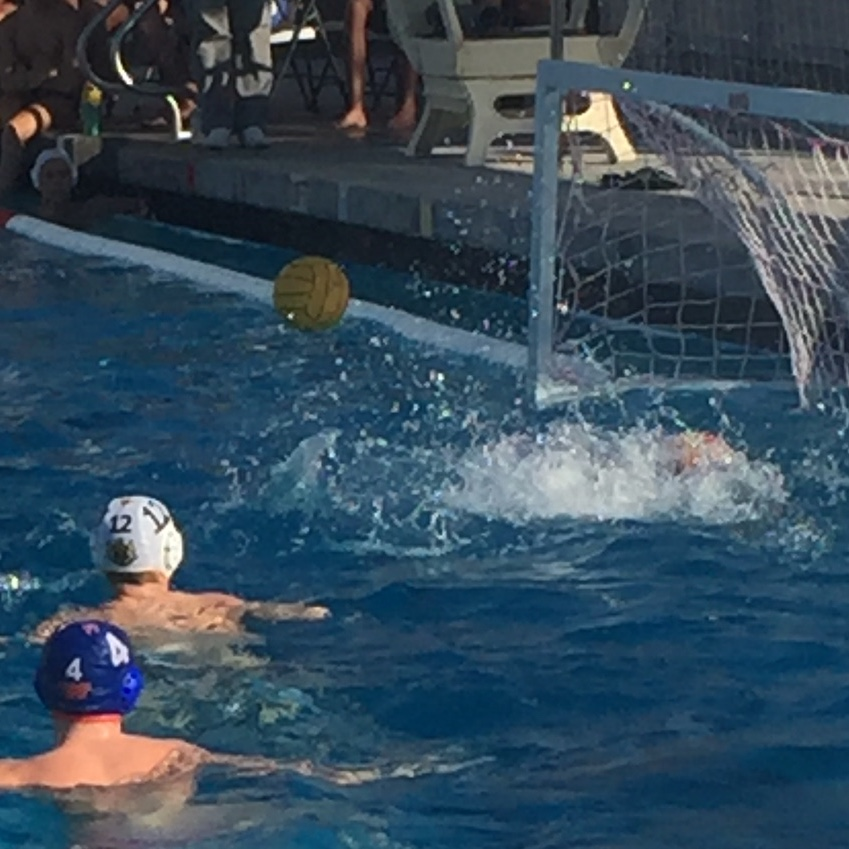 WHS water polo takes surprising defeat from NPHS