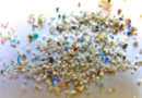 Small but mighty: microplastics