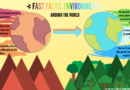 Fast Facts: Environment